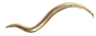 Gold_Snake copy 2.png