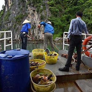 M&E activities in Hai Phong, Vietnam