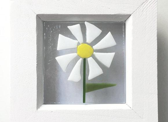 White Daisy Frame.