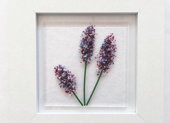 Lavenders.