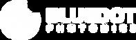 blue_dot_photonics_logo_icon_horizontal_