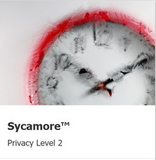 Sycamore-level2.jpg