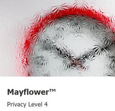 Mayflower-level 4.jpg