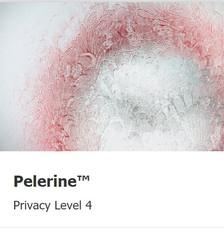 Pelerine-level4.jpg