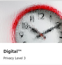 digital-level3.jpg