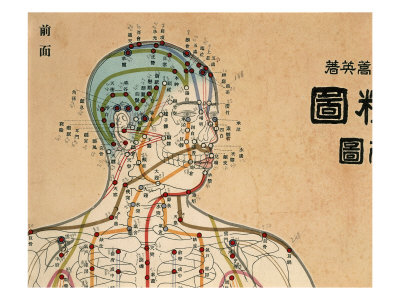 acupuncture-victoria-meridians