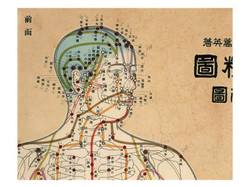 acupuncture-victoria-meridians