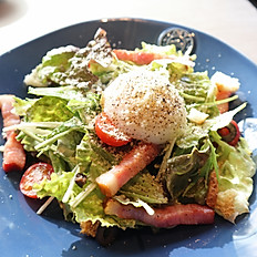 Caesar Salad / シーザーサラダ