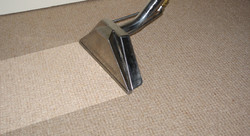 carpet111.jpg