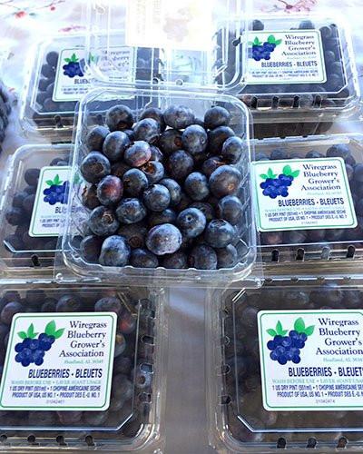 Enterprise Farmers Market 9.jpg