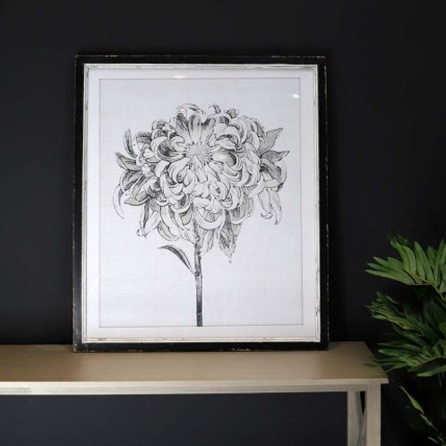 Sketched Floral Picture in Distressed Black Wooden Frame (II)