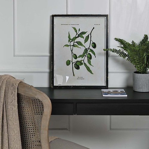 Olive Branch Picture in Distressed Black Wooden Frame (II)