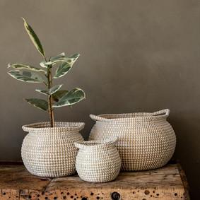 Seagrass Baskets.jpg