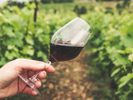 El vino, más que una bebida un alimento