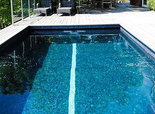 one piece pool with swim lane