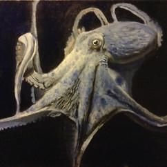 Aquamarine Octopus.jpg