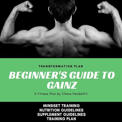 Beginner's Guide to Gainz