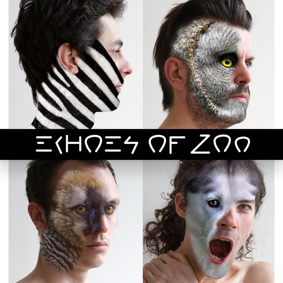 Echoes of Zoo - Aubergine Artist Management