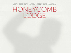 HONEYCOMB LODGE - LAUGHING STOCK