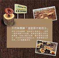 PhotoB-mobile_4.jpg