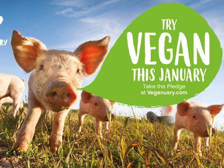 Make this January, a Veganuary.