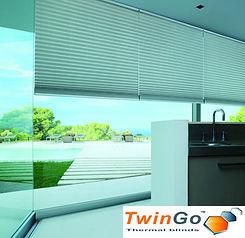 TwinGo Pic with logo.jpg