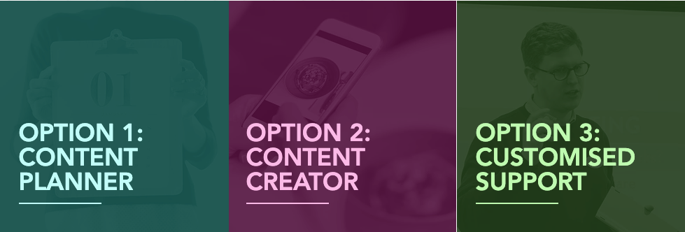 Options 1 to 3 - content planner, content creation and customised support.