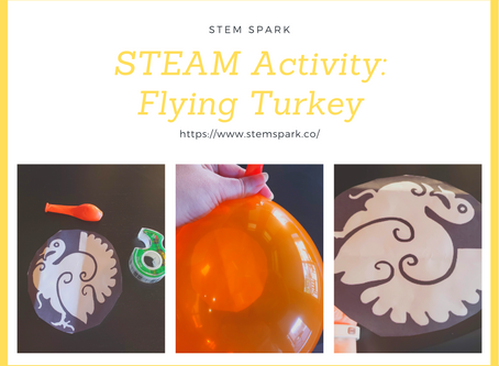 STEAM Activity: Flying Turkey