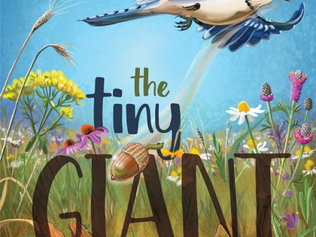 STEM Product Review: The Tiny Giant (Picture Book)