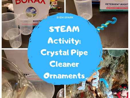 STEAM Activity: Crystal Pipe Cleaner Ornaments