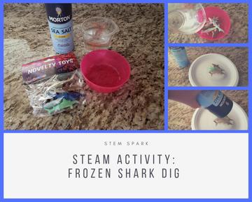 STEAM Activity: Frozen Shark Dig