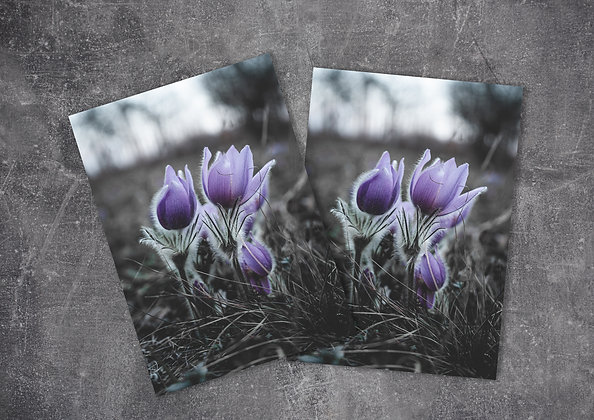 Dark Violet Flower Printable Greeting Card