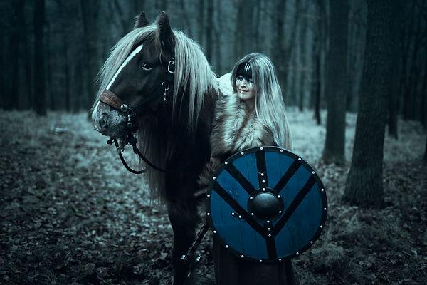 vikingwithhorse-nologo.jpg