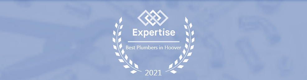 Expertise-15 Best Plumbers-Blue Header.png