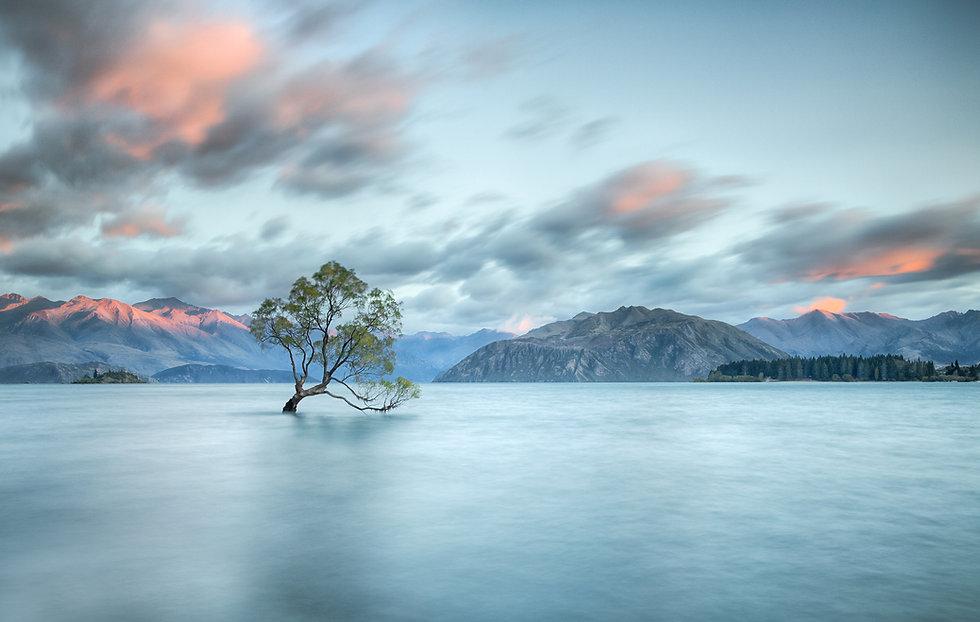 NZ-441-Edit.jpg