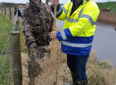 Conservation - Whatever the Weather