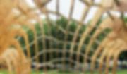 Embassy+for+refugees_timber+frame.jpg
