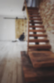 stair and barn door.jpg
