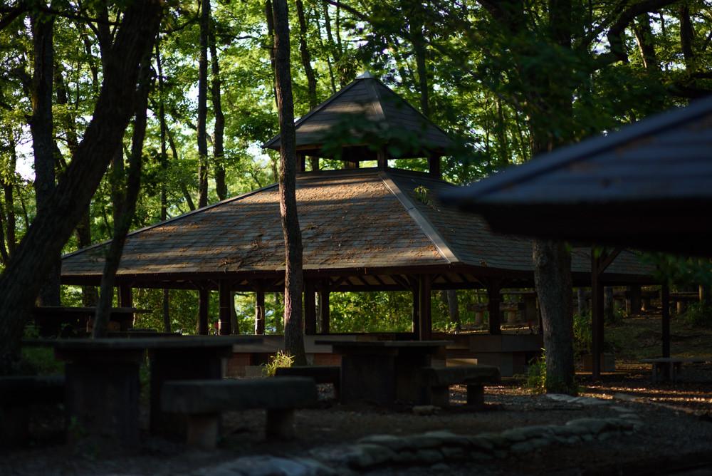 キャンプ場 / Campsite