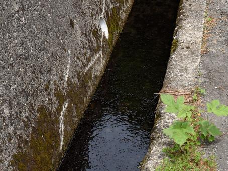 水たまり / Puddle