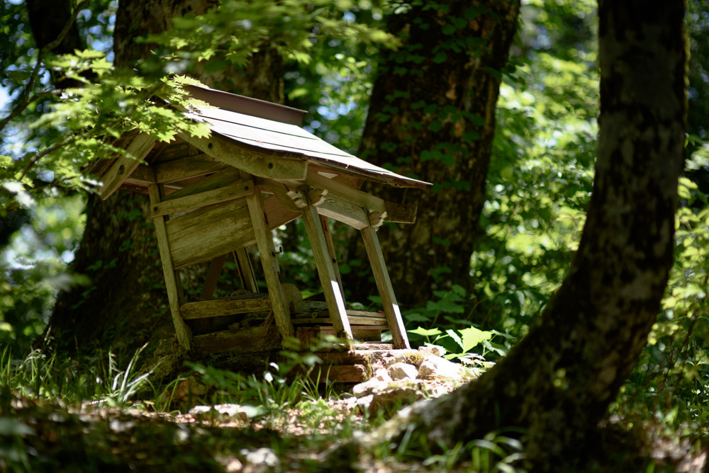 古い小さな祠 / An old small shrine
