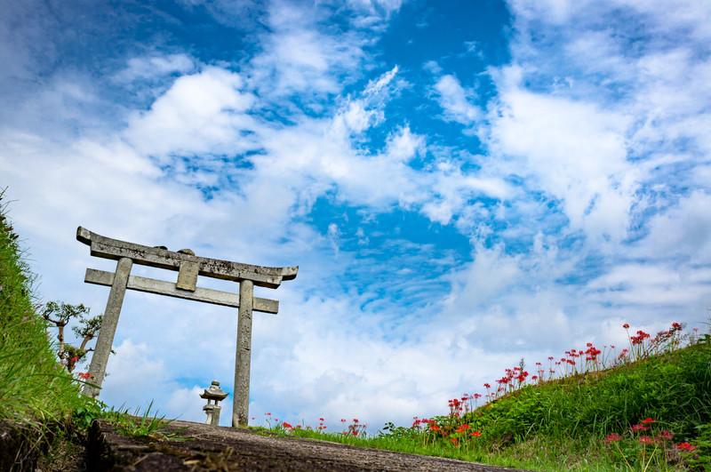 Gate of Shrine