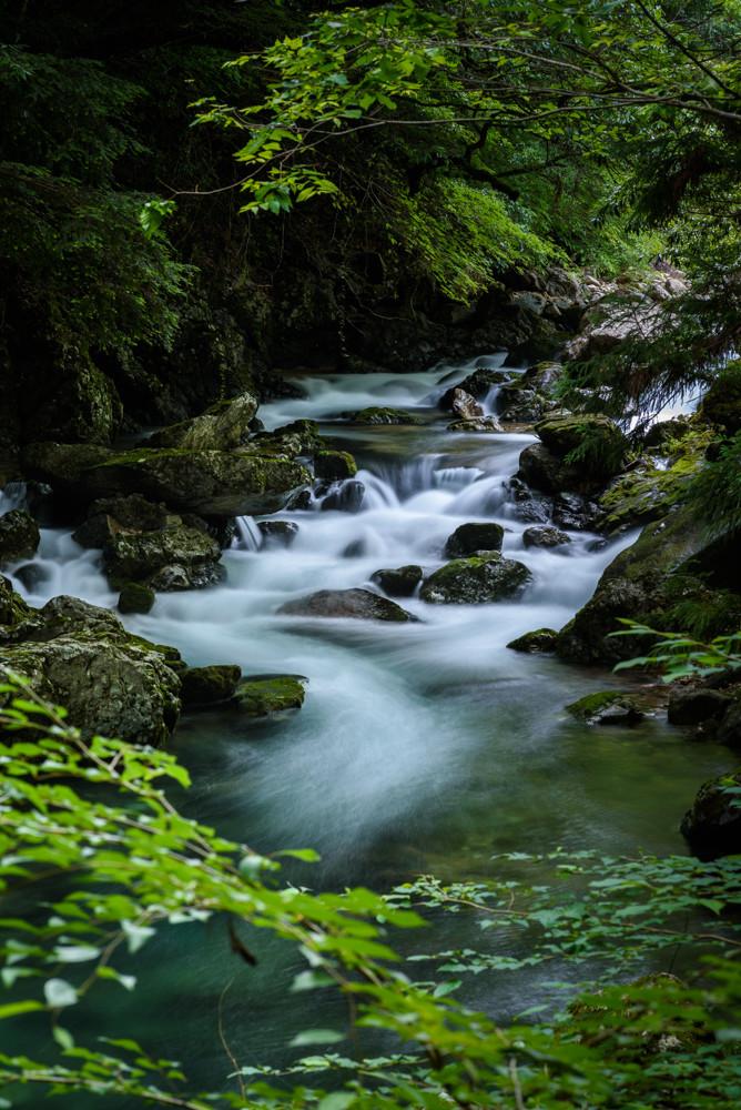 緑の渓流 / Mountain stream surrounded with green leaves