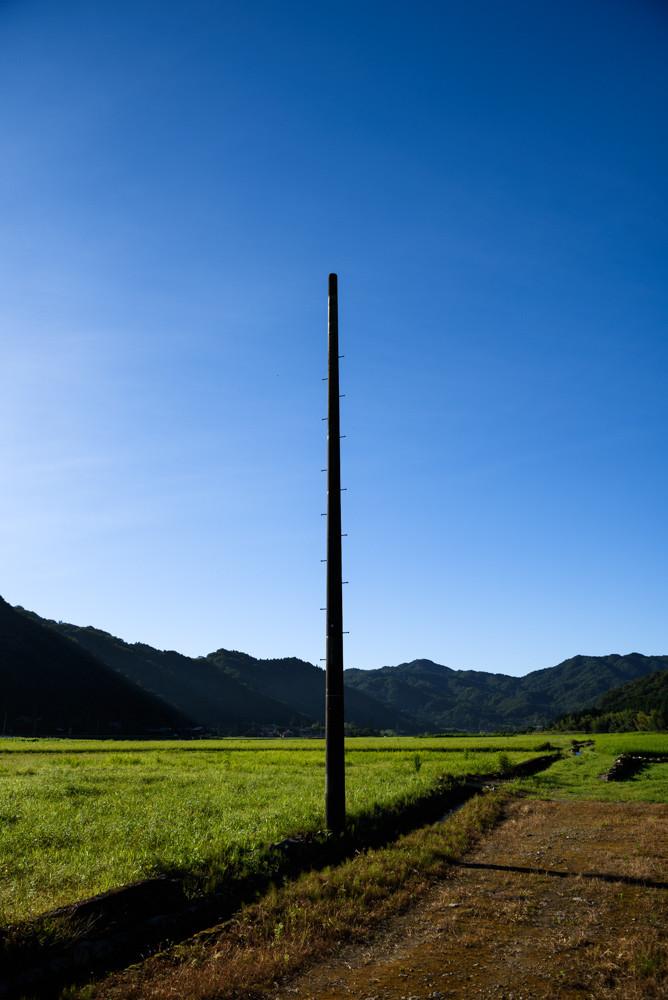 田んぼに立つ電柱跡 / Remains of a utility pole standing in a rice paddy