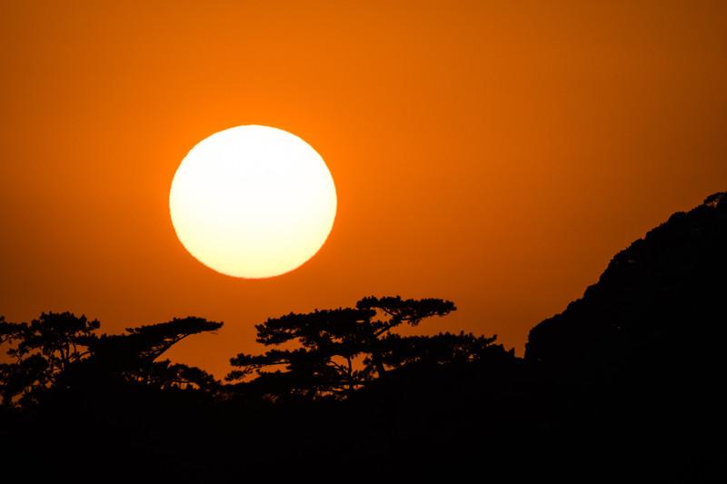 Sunset Behind Japanese Garden