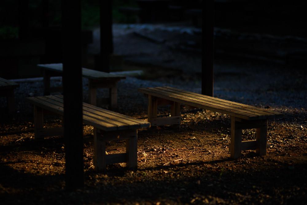 夕日に照らされるベンチ / Benches lit by sunset