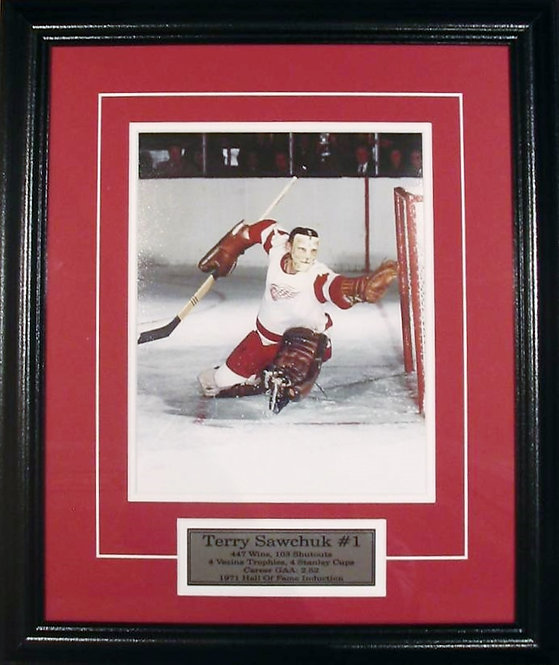 Sawchuk, Terry Red Wings 8x10 Photo Framed