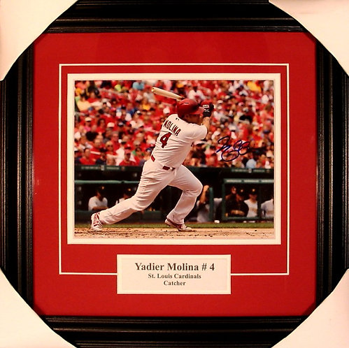 Molina, Yadier Autographed Cardinals 8x10 Photo Framed