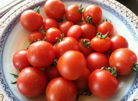 Høstemelding uke 38