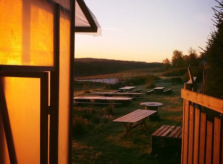 Høsten på gården